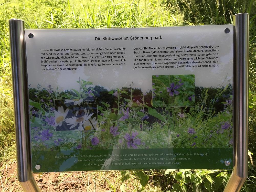 Schild zur Blühwiese im Grönenbergpark in Melle (Foto Elena Schöpe)