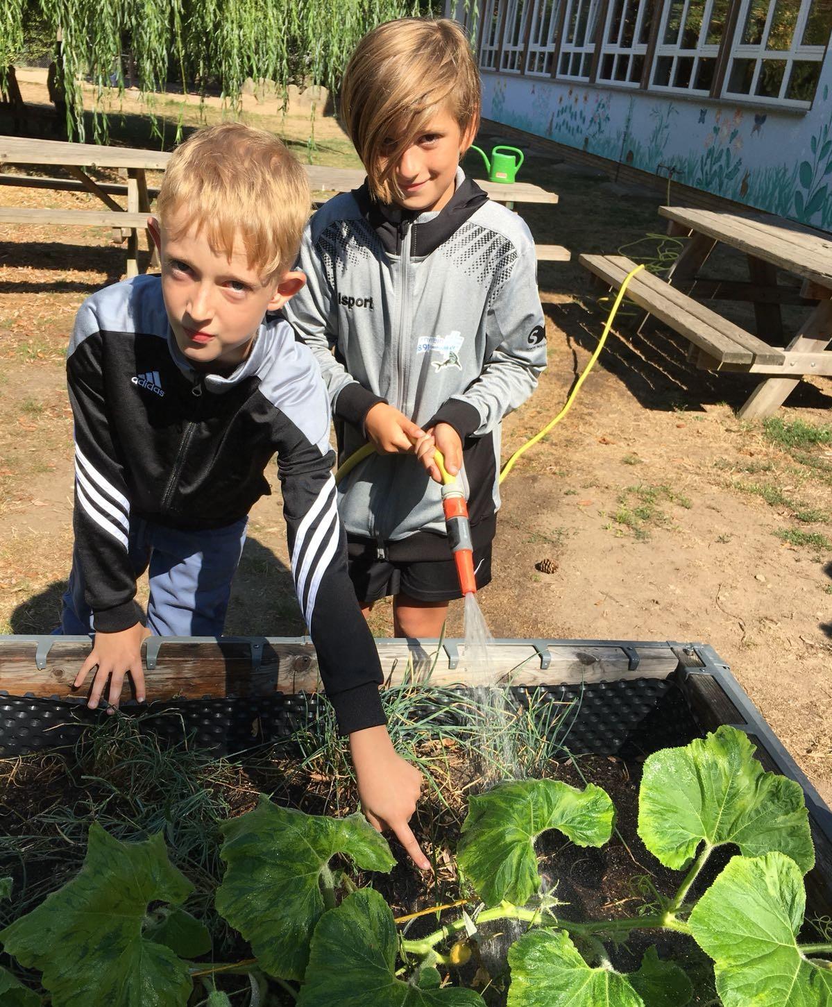 netzwerk natur, Übergabe des PflanzenWelten-Hochbeetes an die Schule im Kirchgarten, Babenhausen (Foto: Schule)