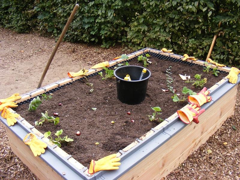 netzwerk natur, Übergabe des PflanzenWelten-Hochbeetes an die Albert-Schweitzer-Schule Selent