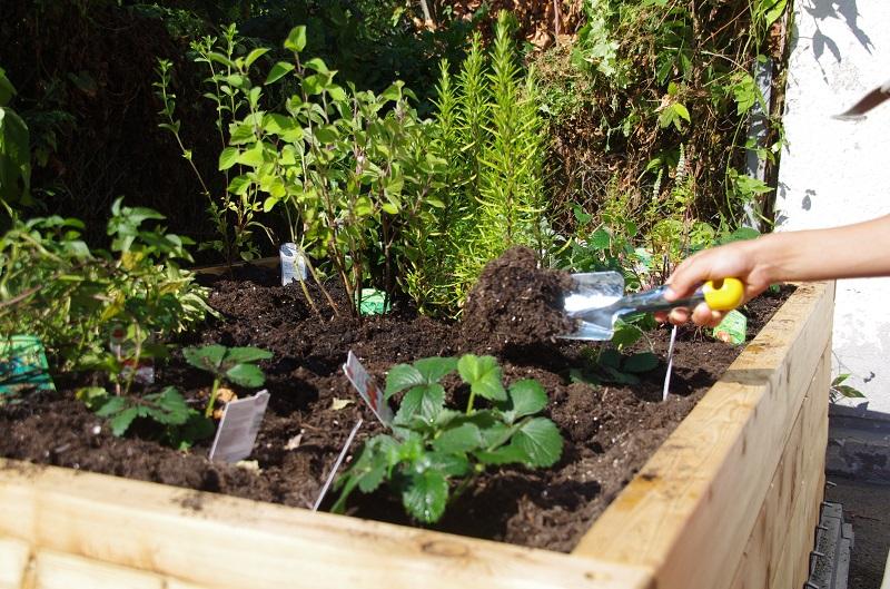 netzwerk natur, Übergabe des PflanzenWelten-Hochbeetes an die Katholische Grundschule Müllekoven (Foto Schule)
