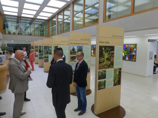 Ausstellung Cottbus