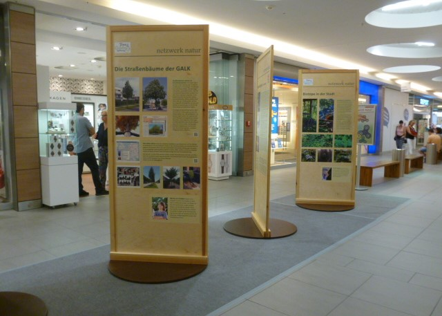 netzwerk natur, Ausstellungseröffnung WALDGRÜN - STADTGRÜN, Weinheim Galerie