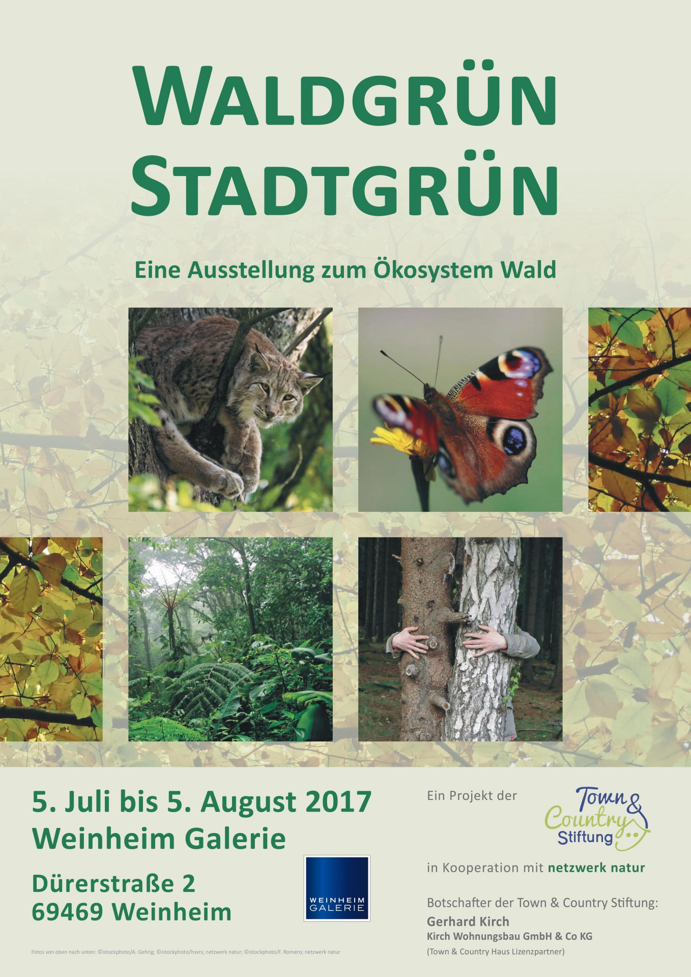 netzwerk natur, WALDGRÜN - STADTGRÜN, Ausstellungsplakat Weinheim Galerie