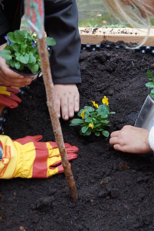 netzwerk natur, Übergabe des Pflanzenwelten-Gewinner-Hochbeetes an die KITA Zwergenland in Stassfurt