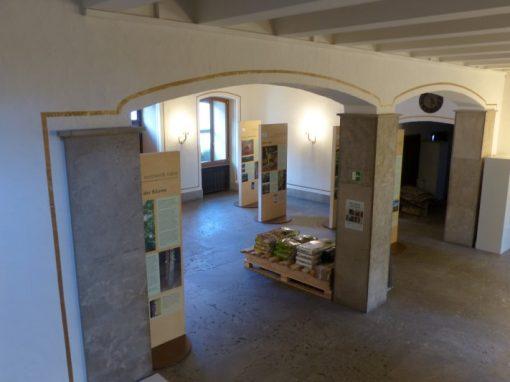 Ausstellung Siegen