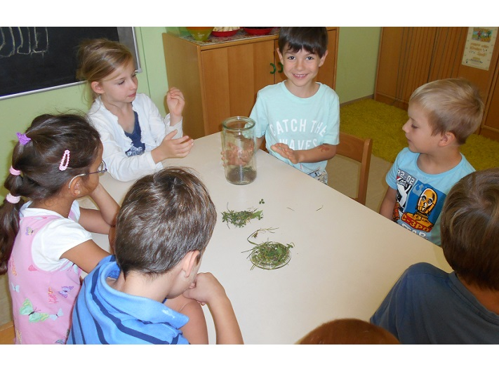"""netzwerk natur, Übergabe des Entdecker-Pakets an die AWO Kindertagesstätte """"Spaßvogel"""" in Zwickau durch Stiftungsbotschafter Horst Wascher. Hier erkunden die Kinder die Funktion des Regenwurmglases."""