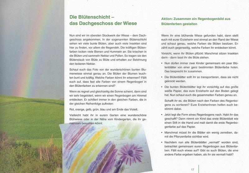 netzwerk natur, Broschüre des Entdecker-Pakets, Blütenschicht