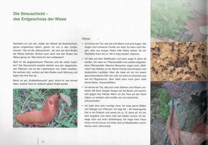 netzwerk natur, Broschüre des Entdecker-Pakets, Streuschicht