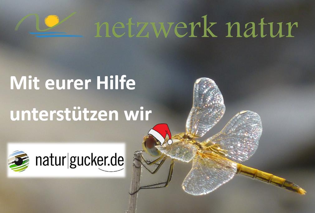 netzwerk natur, Weihnachts-Spendenaktion 2017