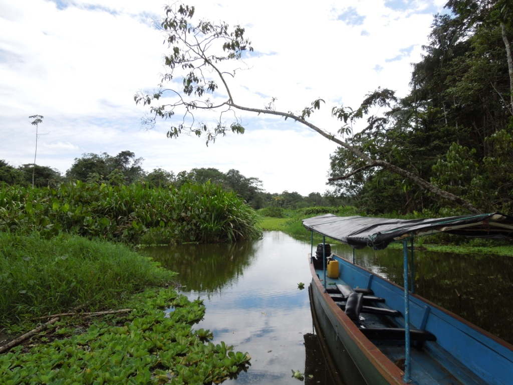 netzwerk natur, Biologische Vielfalt, Ecuador, Lagune