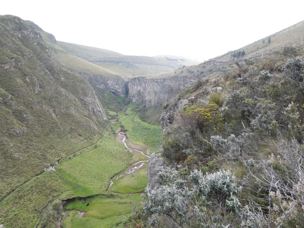 netzwerk natur, Biologische Vielfalt, Ecuador, Landschaft