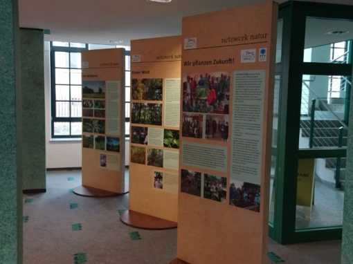 Ausstellung Aue