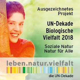 netzwerk natur- Übergabe des PflanzenWelten-Hochbeetes an die Kita Kinderland