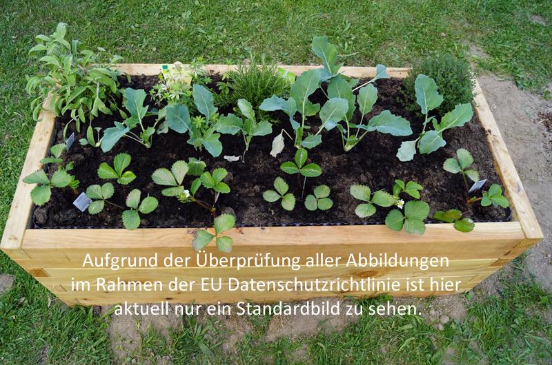 netzwerk natur, Übergabe des PflanzenWelten-Hochbeetes an die Grundschule Aufhausen Pfakofen