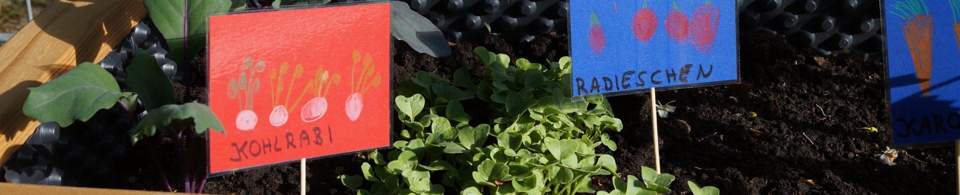 netzwerk natur, Übergabe der PflanzenWelten-Hochbeete in Seelbach