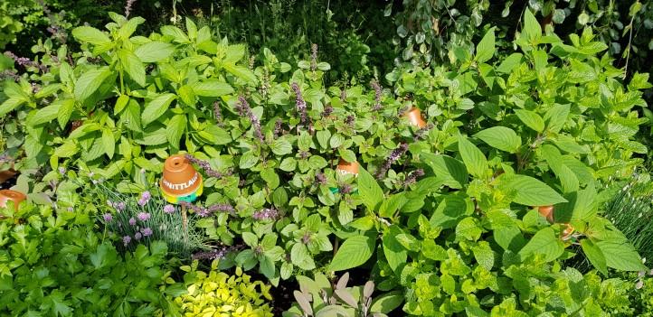 netzwerk natur, Übergabe des Hochbeets an die Marienschule Geldern, Foto: Marienschule