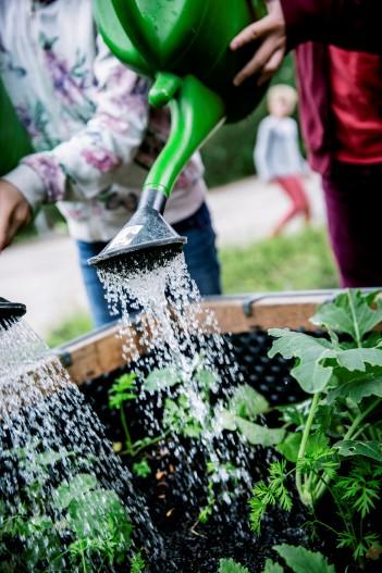 nn Übergabe des PflanzenWelten-Hochbeets an der GS, Ramelsloh in Seevetal, Foto: Schule