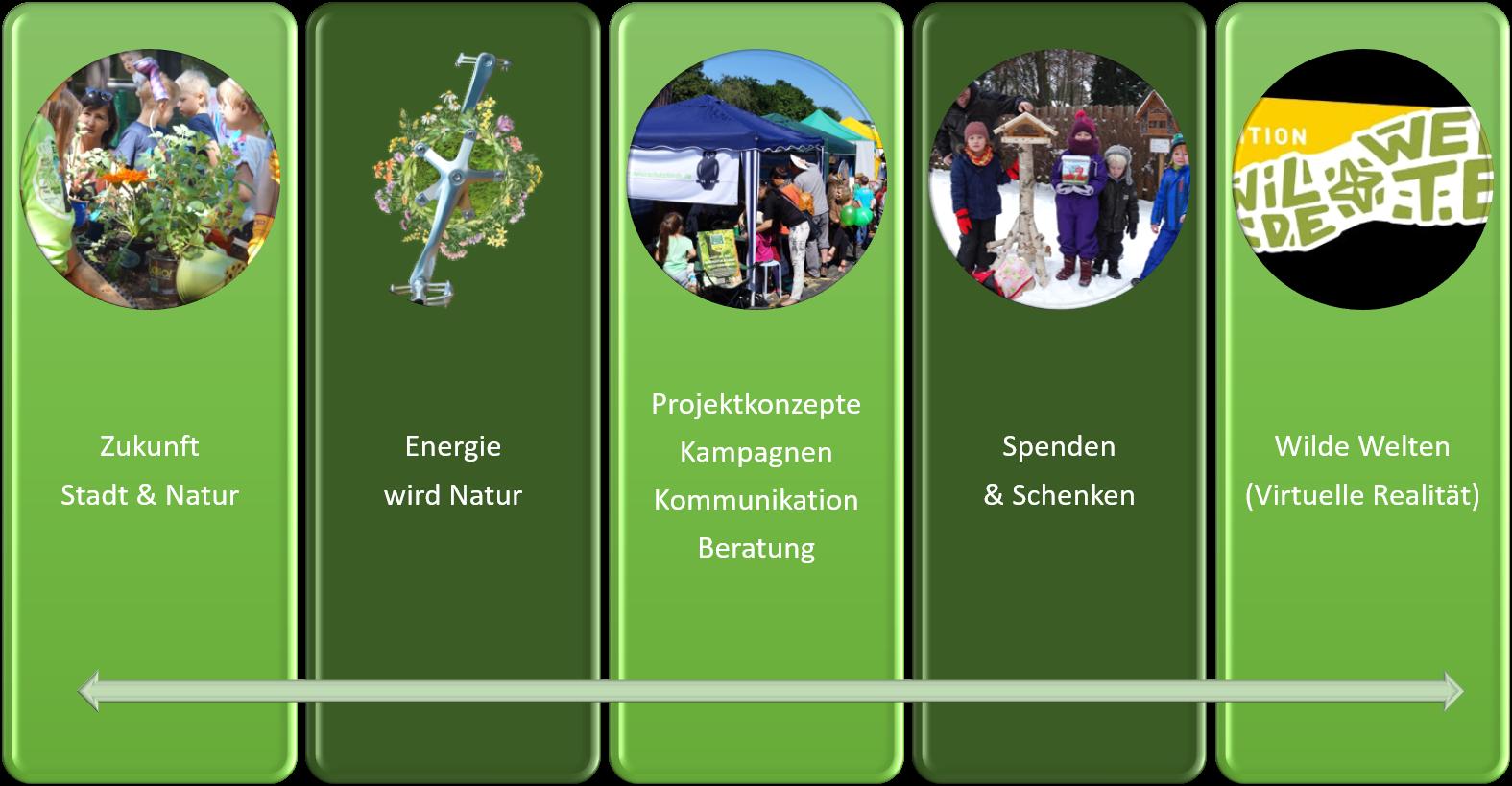 netzwerk natur Projektbüro, Initiativen, Projekte, Leistungsbereiche