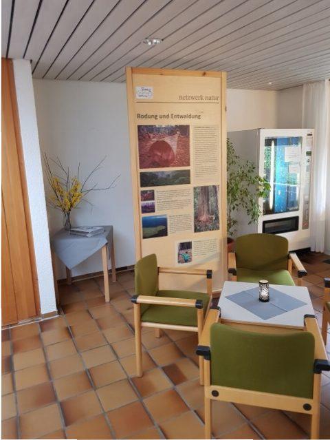 Waldgrün-Stadtgrün in der Waldakademie Schramberg, Foto Jasper Schadendorf