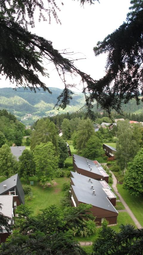 Die Waldakademie Schramberg, Foto Jasper Schadendorf (Small)