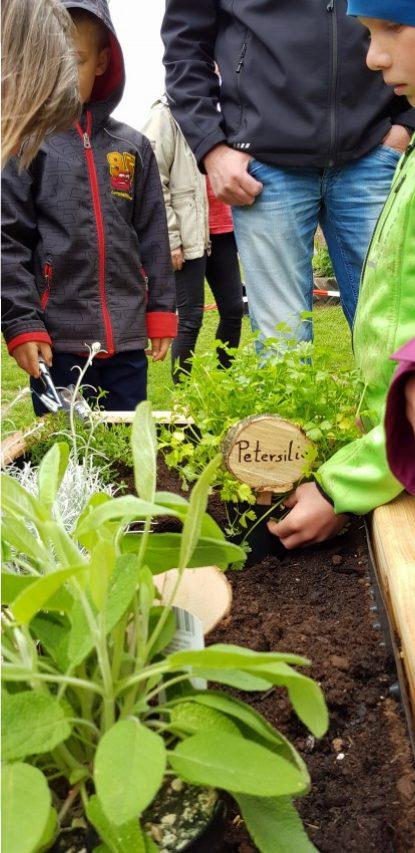 netzwerk natur, Übergabe der PflanzenWelten-Hochbeete in Bunsoh