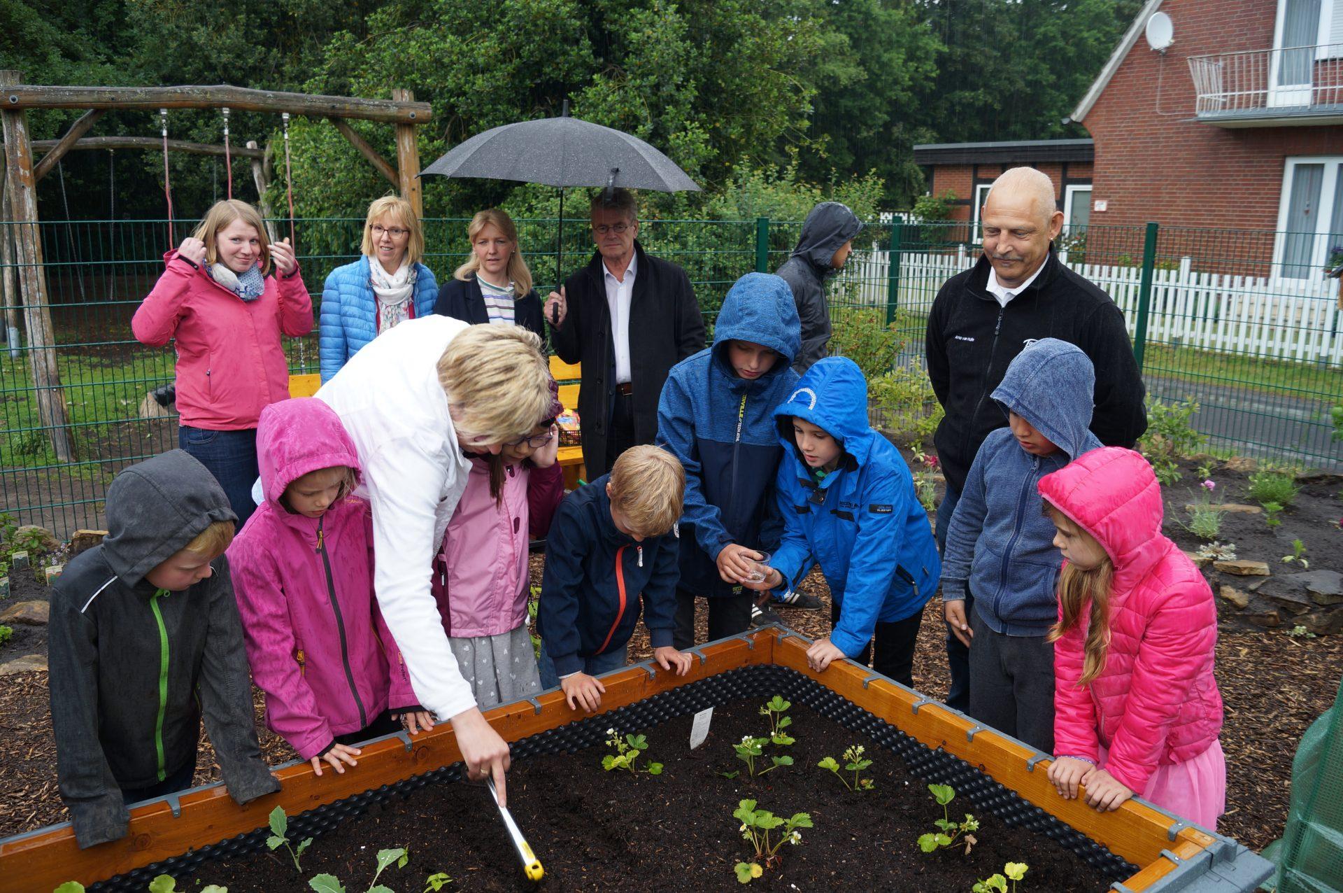 netzwerk natur, Übergabe des PflanzenWelten-Hochbeetes an die Franziskus-Schule OGS Hopsten
