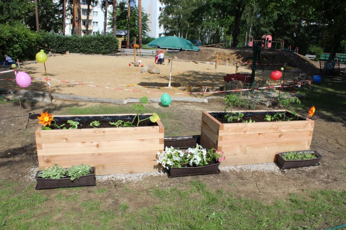 Übergabe der PflanzenWelten-Hochbeete an die Kita Pfiffikus in Bernsdorf (Foto Silke Richter)