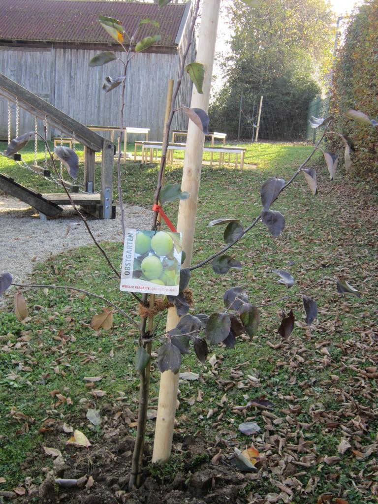 Naschgarten Don-Bosco-Kindergarten Rottenburg