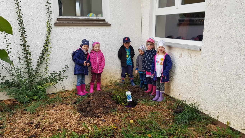 Der Naschgarten des Don Bosco-Kindergartens entsteht - und ruft viel Freude hervor (Foto Kita)