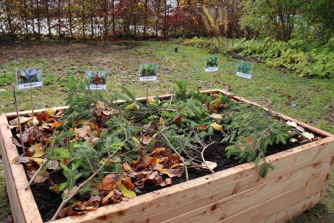 Das PflanzenWelten-Hochbeet für die Mittelschule Freising-Lerchenfeld (Foto Molkerei Eihensteephan)