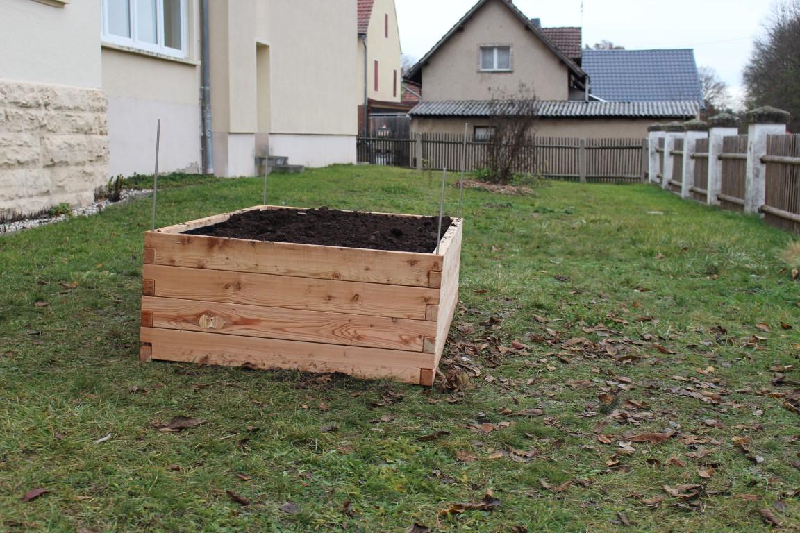 Das PflanzenWelten-Hochbeet der Grundschule Am Erlbach in Kraftsdorf (Foto Behnisch)(2) (Medium)